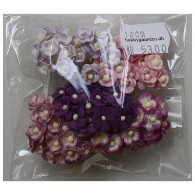 Sweetheart Blossom - Purple-Lilac Mix 10 mm 100 stk